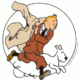 tintin - camelot translations